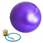 Anti-Burst Inflatable Gym Fitness Exercise Yoga Ball